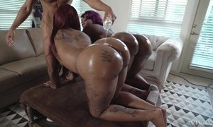 Several obese ebonies less prominent butts acquire oiled involving and drilled in trilogy